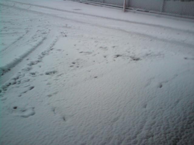 雪の日はイケメンに限る★
